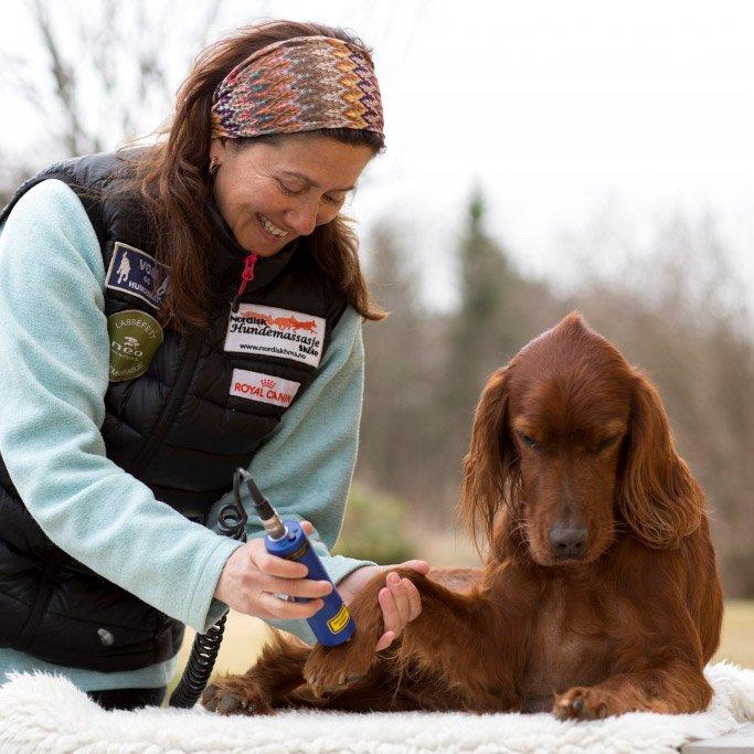 Team VOM: Carmen Germaine Kadim, Nordisk Hundemassasjeskole AS