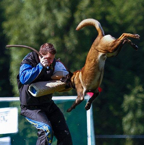 Team VOM: Kim Lyshaug, hundeoppdretter